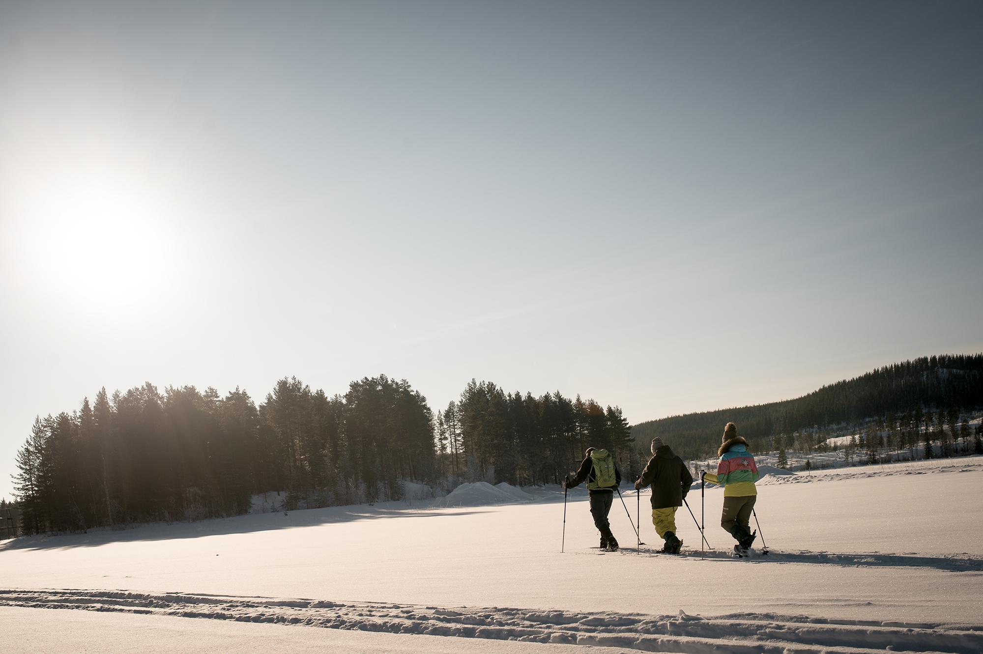 abenteuerreich Erlebnistouren, Lappland, Schweden, Winter, Eisangeln, Motorschlitten, Elch, Rentier, Schneeschuhe, Langlaufski, Nordlichter