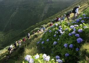 abenteuerreich Erlebnistouren, Azoren, wandern, Inselwandern, Sao Miguel, Vulkanwandern,Wale watching
