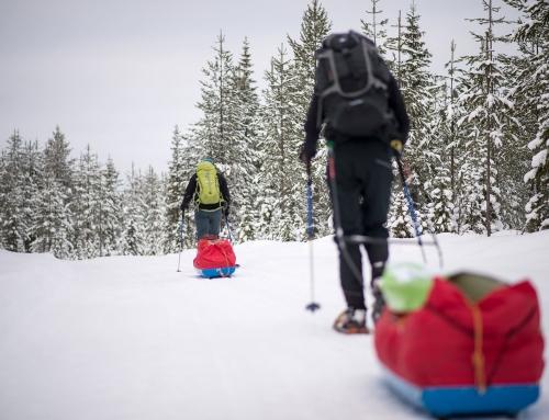 Mit den Schneeschuhen durch Nordschweden