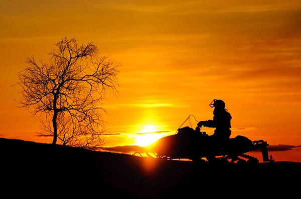 abenteuerreich erlebnistouren, lappland, schweden, motorschlittentour, tour für 2, elch beobachten, elchtour, wildnis in schweden erleben, individuelle tour buchen
