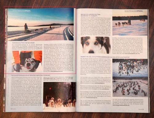 Bericht über unsere Hundeschlittentour im Nordis Magazin