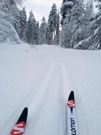 abenteuerreich, erlebnistouren, wintertour, schweden, nordschweden, eisbrecher, langlaufski, eisangeln, geführte schwedenreise, polarkreis, www.abenteuerreich.de