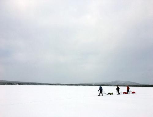 Mit Zelt und Pulka unterwegs (4 Tage)