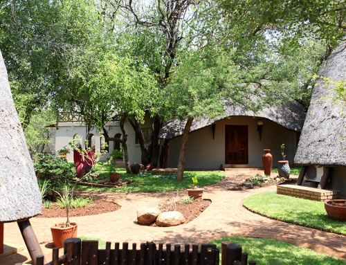 Übernachtung auf einer Lodge in Südafrika – Marloth Park