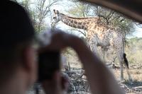 abenteuerreich, erlebnistouren, südafrika, selbstafhrerreise, swasiland, eswatini, marloth park, hesc, krüger nationalpark, safari, big5