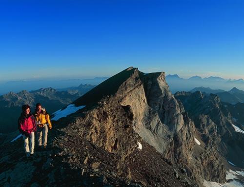 Bergwanderung auf das Barrhorn 3.610m