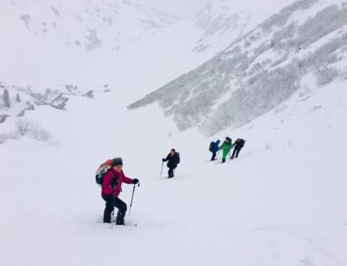 Schneeschuhwanderung zum Neuhornbachhaus (2 Tage)