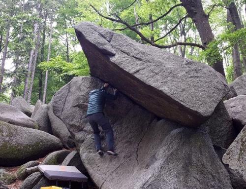 Bouldern in der Pfalz (1/2 Tag)