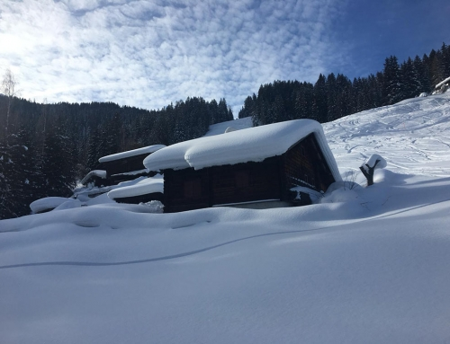 Schneeschuhtour mit Almübernachtung (3 Tage)